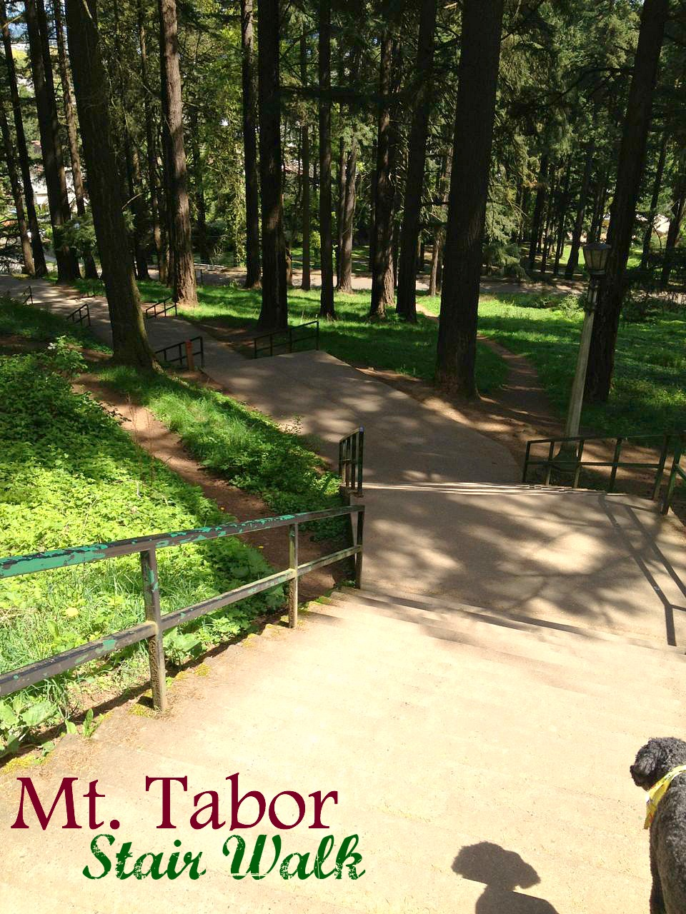 Enjoy a Mt. Tabor Stair Walk