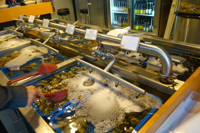 Not only can you eat at Taylor Shellfish, you can also get oysters to go