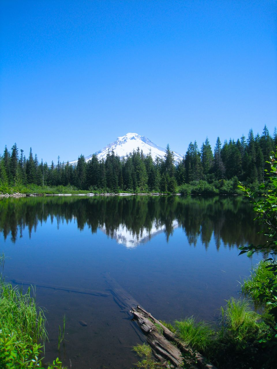 Mt. Hood from the Mirror Lake Hiking Trail